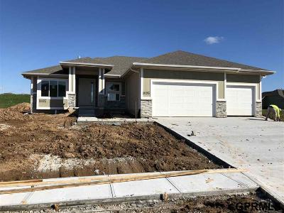 Single Family Home For Sale: 10105 S 106 Street