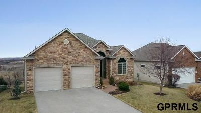 Ashland Single Family Home For Sale: 1020 Granite Way