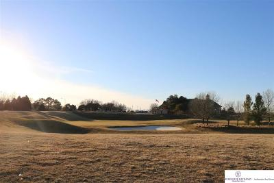 Omaha Residential Lots & Land For Sale: 13434 Eagle Run Drive