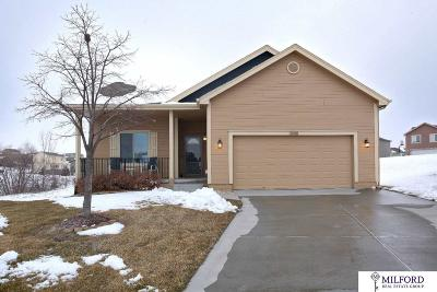 Omaha Single Family Home For Sale: 18920 Drexel Circle
