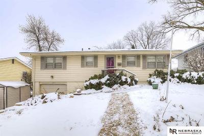 Omaha Single Family Home New: 2317 S 123rd Street
