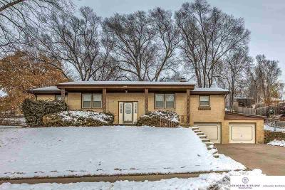 Omaha Single Family Home New: 9212 Grand Avenue