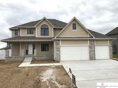 Papillion Single Family Home New: 9961 S 106 Street