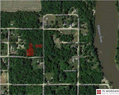 Omaha Residential Lots & Land New: 24330 Redick Street