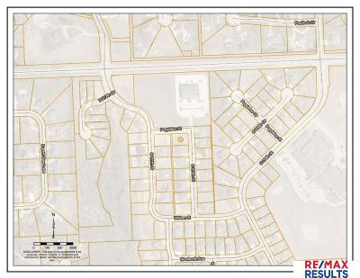 Omaha Residential Lots & Land New: 1304 S 210th Street