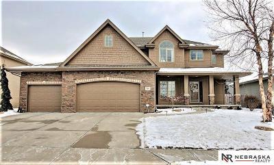 Omaha NE Single Family Home New: $430,000