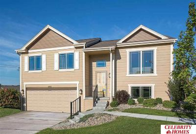 Omaha Single Family Home New: 8512 Baker Street
