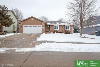 Sarpy County Single Family Home New: 12149 S 218th Street