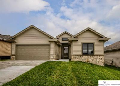 Omaha Single Family Home For Sale: 21264 Arbor Court