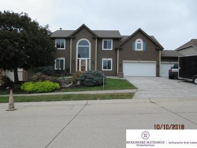 Single Family Home For Sale: 17801 Shadow Ridge Drive