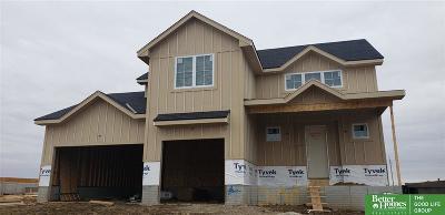 Single Family Home For Sale: 20935 Drexel Street