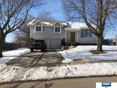 Papillion Single Family Home For Sale: 1140 Overland Trail