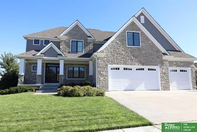 Omaha Single Family Home For Sale: 10503 S 176th Circle