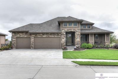 Omaha NE Single Family Home New: $449,900