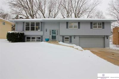 Omaha Single Family Home New: 1332 Holling Drive