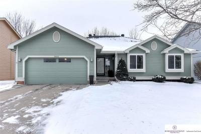 Omaha NE Single Family Home New: $289,000