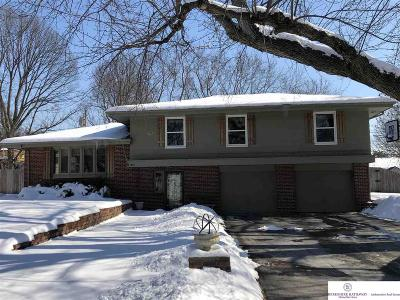 Single Family Home For Sale: 815 Skyline Drive