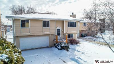 Single Family Home New: 10511 Crown Point Avenue