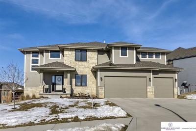 Omaha NE Single Family Home New: $450,000