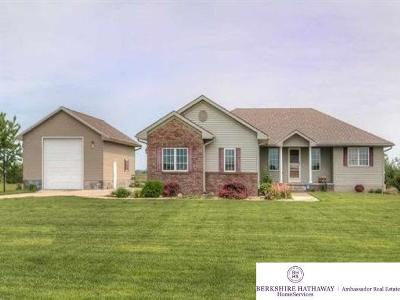 Fremont Single Family Home For Sale: 3968 Old Highway 8