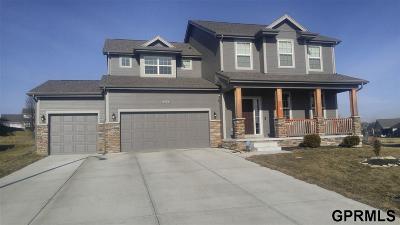 Bennington Single Family Home For Sale: 16086 Girard Circle