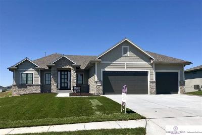 Omaha Single Family Home For Sale: 12922 Craig Street