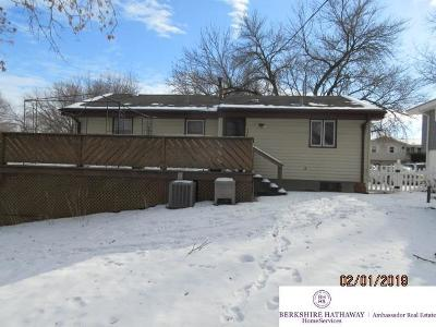 Omaha Single Family Home For Sale: 9218 Ruggles Street