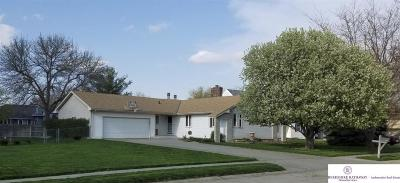 Omaha Single Family Home New: 20508 Antler Circle