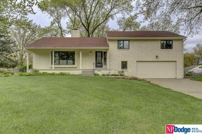 Omaha Single Family Home For Sale: 1006 S 114 Street