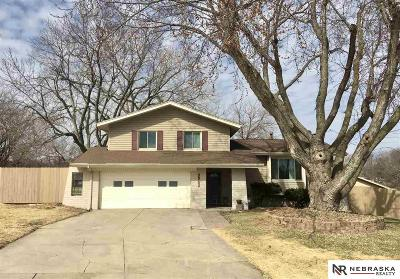 Omaha Single Family Home For Sale: 9942 Orchard Circle