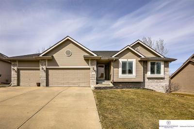 Omaha Single Family Home New: 17020 Patterson Street
