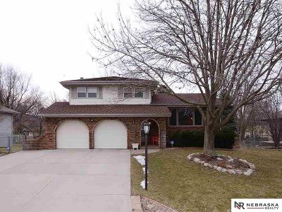 Elkhorn Single Family Home New: 1019 Skyline Drive