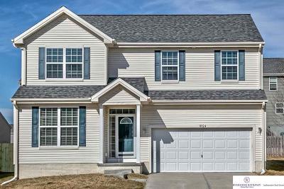 Omaha Single Family Home New: 8824 S 163 Street