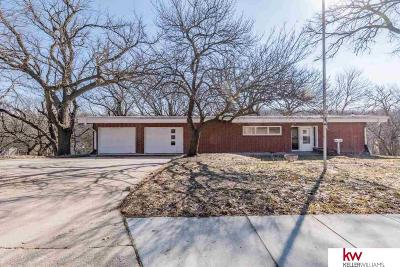 Sarpy County Single Family Home New: 101 Bellevue Boulevard