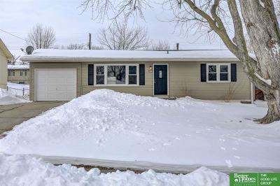 Ralston Single Family Home New: 6714 S 82nd Street