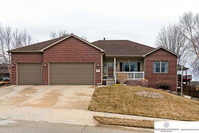 Omaha Single Family Home New: 19732 I Street