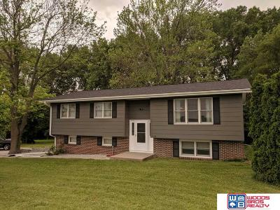 Eagle Single Family Home For Sale: 217 S 226th Street