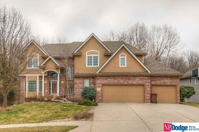 Ashland Single Family Home For Sale: 613 S Lakeview Way