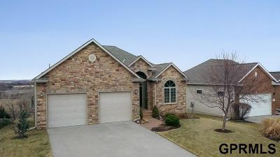 Ashland Single Family Home For Sale: 1020 Granite Way