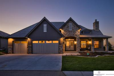 Omaha Single Family Home For Sale: 17502 Douglas Street
