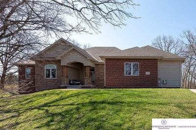 Omaha Single Family Home For Sale: 23715 P Street