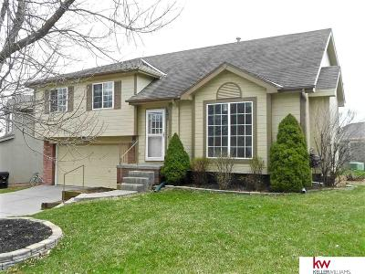 Omaha Single Family Home For Sale: 6527 S 117th Street