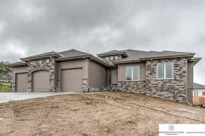 Omaha Single Family Home For Sale: 1403 N 196 Street