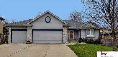 Elkhorn Single Family Home For Sale: 3855 N 210 Street