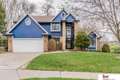 Papillion Single Family Home For Sale: 811 N Madison Street