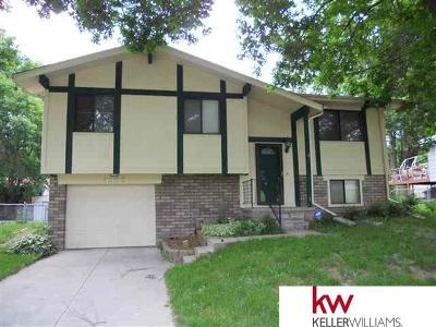 Bellevue Single Family Home New: 11921 Golden Boulevard Boulevard