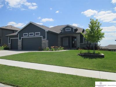 Omaha Single Family Home New: 18923 Sahler Street