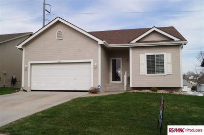 Omaha Single Family Home New: 7205 S 180 Avenue