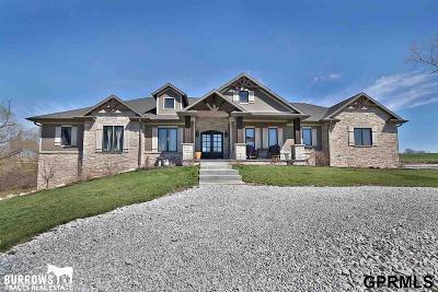 Single Family Home For Sale: 29804 Van Dorn Street