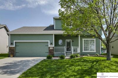 Omaha Single Family Home New: 18767 Holmes Street